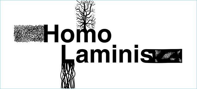 Homo Laminis